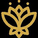 lotus (1)